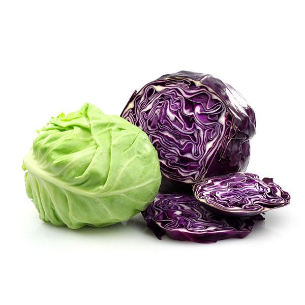 Cabbage varieties
