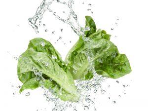 Sormac washing salads by VeggieLine spiral washer